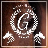 VMG Horse Ranch