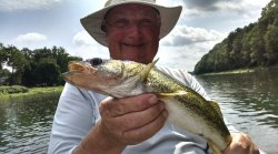 Shhhhhhh! Nice river walleyes on the beautiful Upper Delaware River!
