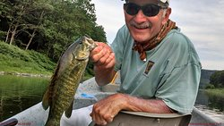 80+ fish days during the summer months with the river bronzebacks!