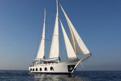 Odysseus A. Yacht Cruises