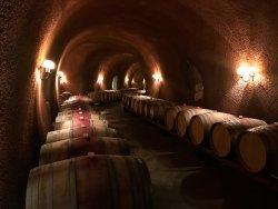 Paoletti Vineyards