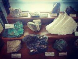 UFPA Geoscience Museum