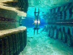 Mataranka Thermal Pool, Elsey National Park