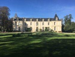 Bordeaux Wine Trails