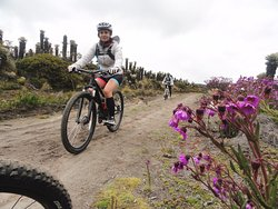 Andes Turismo y Aventura