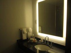 standard Hilton bathroom