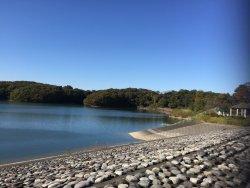 Lake Sayama