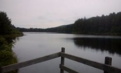 Shamokin Reservoir