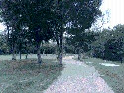 Jenkins Park