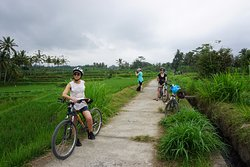 Greenbike Cycling Tour