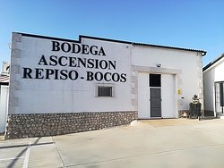 Bodegas Ascension Repiso Bocos