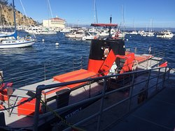 Catalina Expeditions  Tours