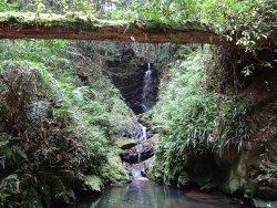 Ioki Cave