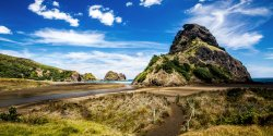 One of Auckland's black-sand beaches, Piha Beach. (291515865)