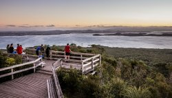 360° panoramic view over the city and harbour from Rangitoto Island summit. (291516187)