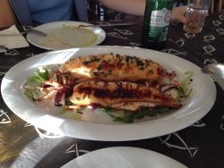 Grilled squid was good