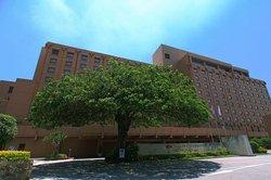 ANA Crowne Plaza Okinawa Harborview