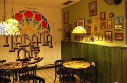 Habana Cafe Cadiz