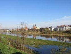 Park Stare Koryto Warty Poznan - brzeg rzeki