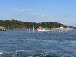 Marubun Matsushima Kisen