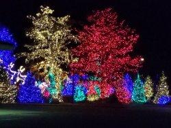 Beautiful Holiday ambiance!