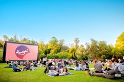 Moonlight Cinema