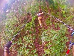 Tree Top Adventure Park