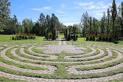 Botanical Gardens of Silver Springs