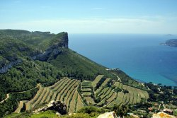 Provence Amazing Tours