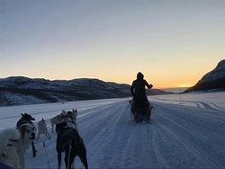 Kirkenes Snowhotel Husky Trips