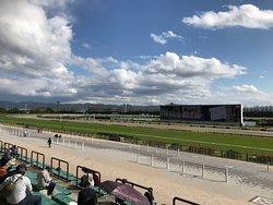 Kyoto Horse Racetrack