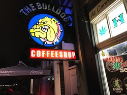 The Bulldog Energy