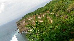 My Bali Activity