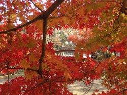 Shosei-en Garden