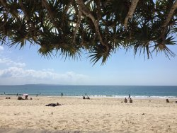 We will be back ! Noosa cheap gem
