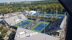 A view of some of the outdoor courts