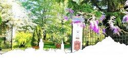 Villa Maria Sole