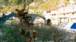 Crnojevica river