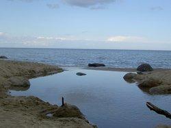 Vitemölla strand