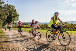 Bike Florence & Tuscany Day Tours