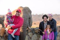 Elephant Moments