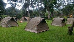 Masai Camp