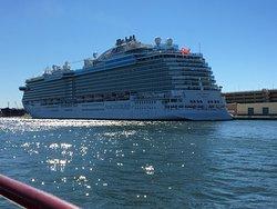 Carrie B Cruises