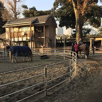 Shibuya Yoyogi Pony Park