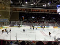 Erie Otters Hockey
