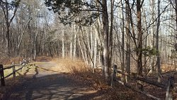 Roaring Brook Park