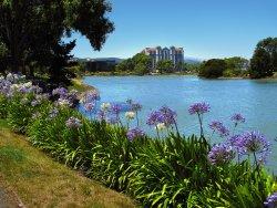 Hilton SFO Airport - Anza Lagoon From SF Bay Trail Behind the Hotel