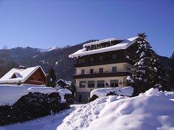 Gasthof Pension Appartements Zur Gams