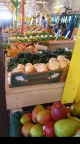 Fresh produce stands