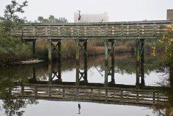 Wade Ward Nature Park